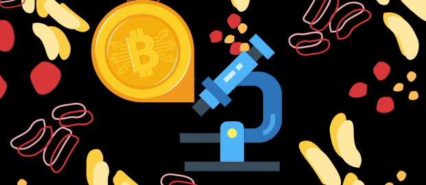 What is Bitcoin? Everything You Should Know About Bitcoin - HashFeed